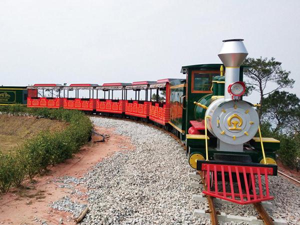 CHC-60人 翡翠绿轨道观光小火车