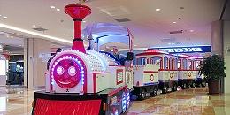 景区电动观光小火车的常见检验项目和内容有哪些?