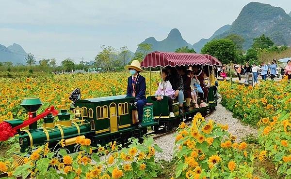 桂林遇龙河网红小火车