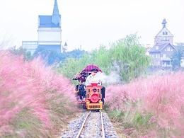 武汉花博汇3款网红观光小火车你中意哪款?