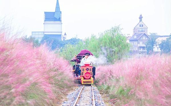 花博汇网红观光小火车(山茶红)