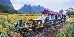 为何迷你蒸汽观光小火车能够成为景区网红项目?